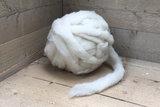 500 g gew. Kammzugwolle - Swifter (Elfenbeinfarbig)_