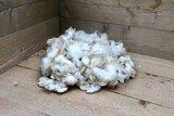 200 g Basiswolle / Füllwolle - gewaschen (Wollweiß)_