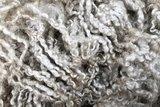 100 g Lammwolle - Wensleydale schaf (Elfenbeinfarbig)_