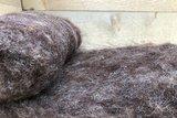 100 g gewaschene Vlieswolle - Dassenkopf (Moorit)_