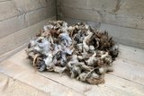 500 g Lammwolle - Skudde (Fuchs)_