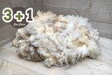 4 kg A-Klasse - Texelschaf (Elfenbeinfarbig)_