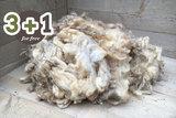 4 kg Lammwolle - Texelschaf (Elfenbeinfarbig)_