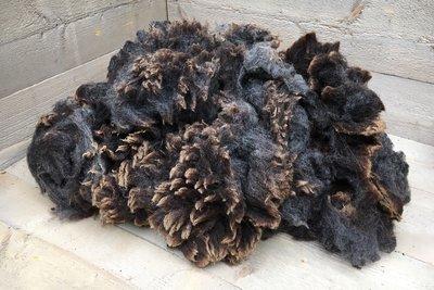 1 kg A-Klasse - Blaue Texelschaf (Mittelgrau)