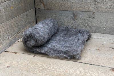 100 g gewaschene Vlieswolle - Blaue Texelschaf (Hellgrau)