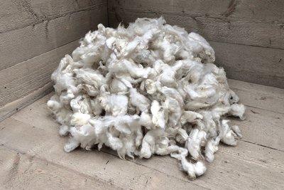 1 kg Basiswolle / Füllwolle - gewaschen (Wollweiß)