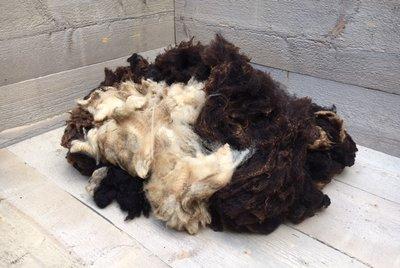 1 kg Basiswolle / Füllwolle - pur (Gemischt)