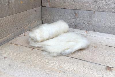 100 g gewaschene Vlieswolle - Wensleydaleschaf (Elfenbeinfarbig)