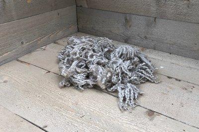 100 g Lammwolle - Wensleydale schaf (Elfenbeinfarbig)