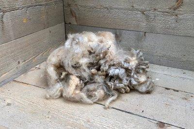200 g Basiswolle / Füllwolle - pur (Wollweiß)