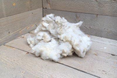 100 g weiche Puppen- und Kissenfüllung - gewaschen (Wollweiß)