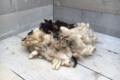200 g Basiswolle / Füllwolle - pur (Gemischt)