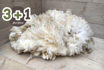 4 kg Lammwolle - Swifter (Elfenbeinfarbig)