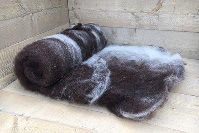 500 g gewaschene Vlieswolle - Nied.Buntes Sch. (Bunt gefleckt)